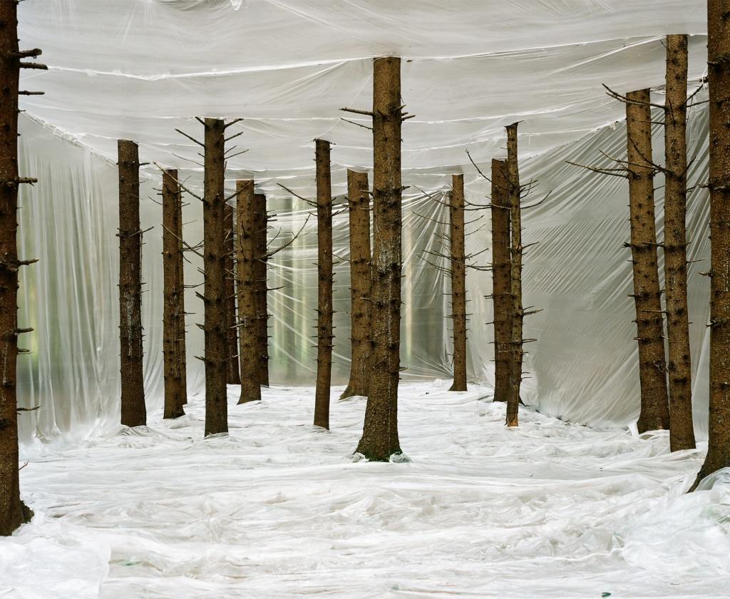 Markus Guschelbauer, Plastic Nature, 2011 © Courtesy of Photon Gallery. Ljubljana, Slovenia