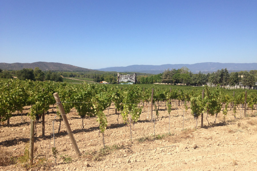 chateaulacoste-wine