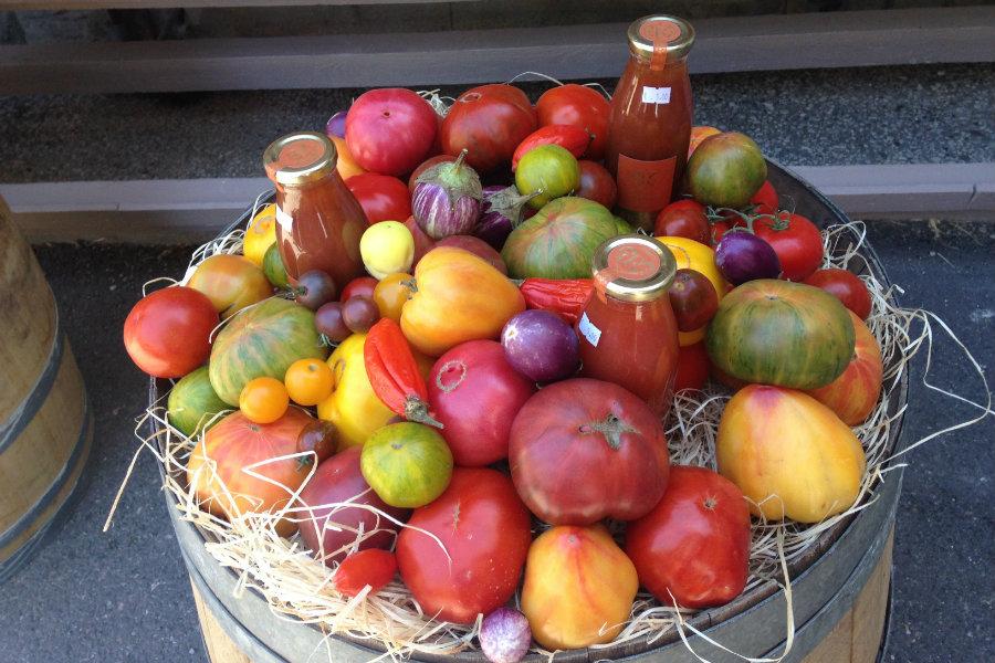 Gordes tomatoes Provence