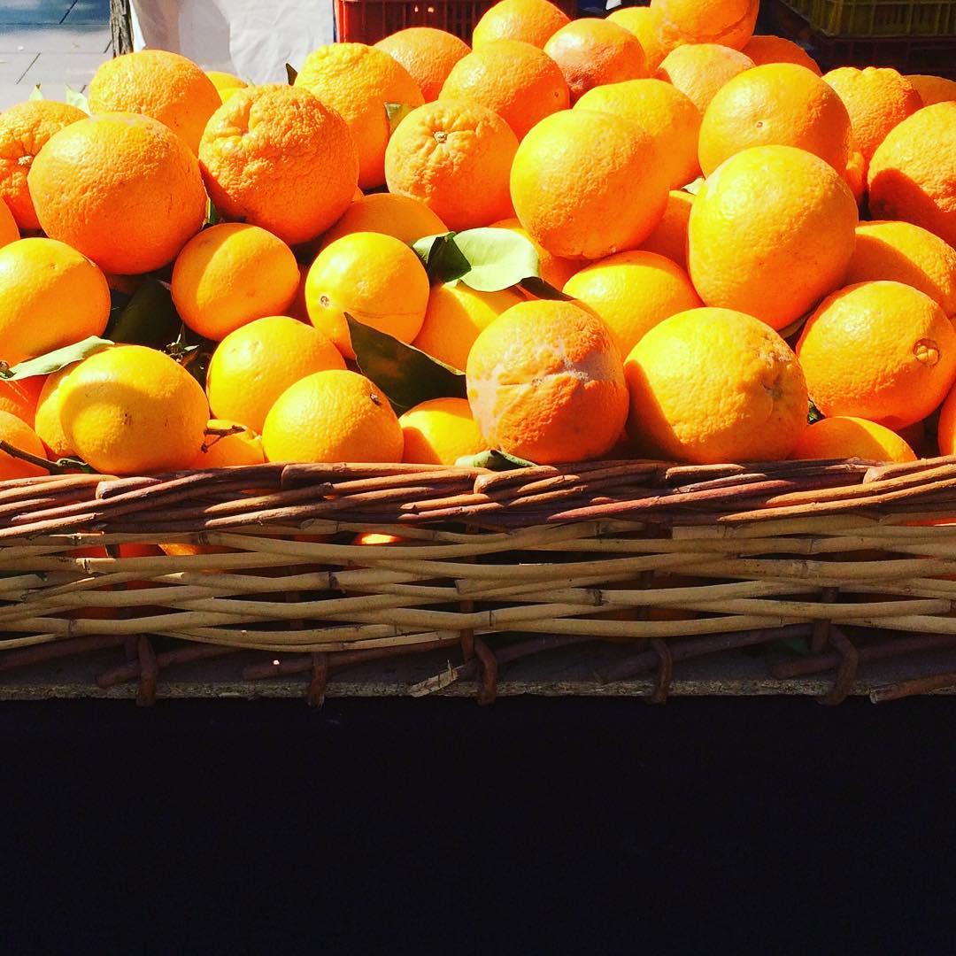 oranges instamood instadaily travel escape traveler fruits spring dreamingofhellip