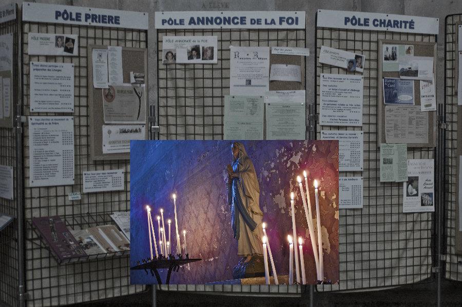 Michel Houellebecq Venus Gallery