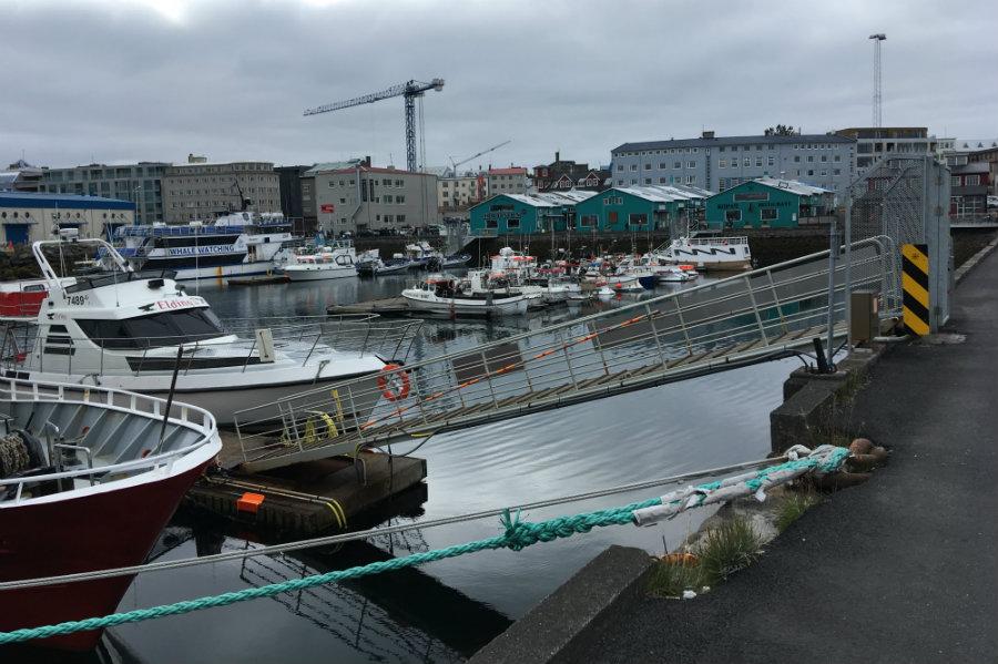 Reykjavik the harbour