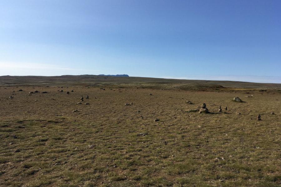 Green field Iceland