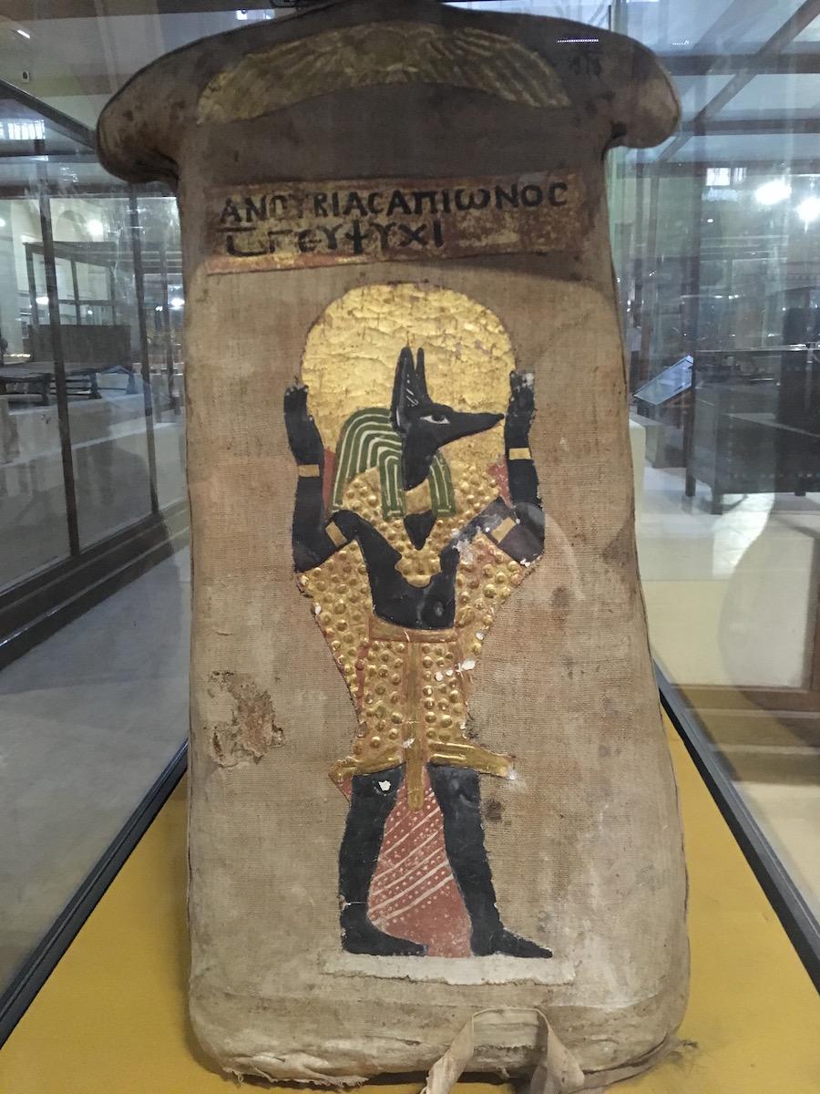 museum cairo anubis